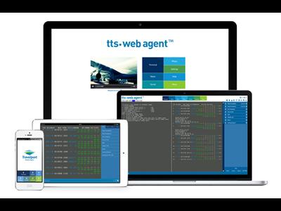 TTS Web Agent